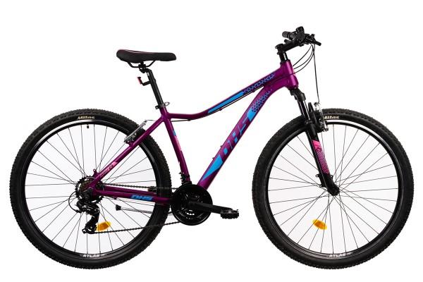 DHS Mountainbike 29 Zoll Gr. S in Violett