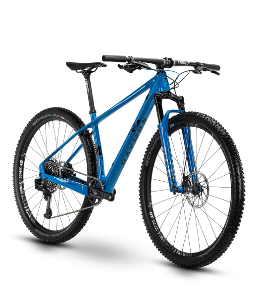 "R Raymon HardRay Nine 9.0 29"" Mountainbike Hardtail"