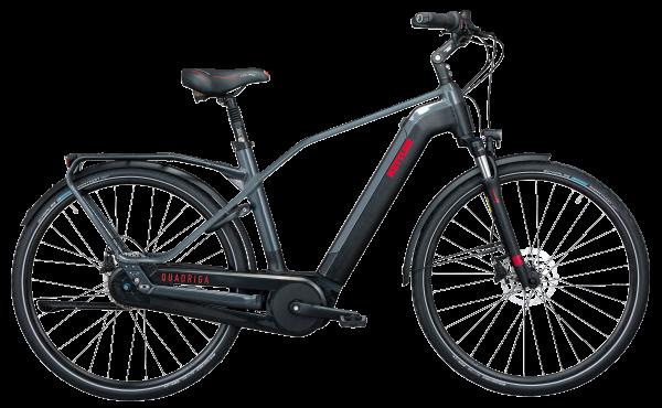 KETTLER Alu-Rad Quadriga Plus 8 FL Benelux 500 Wh 28 Zoll 8 Gang Nabenschaltung mit Freilauf - RH 47