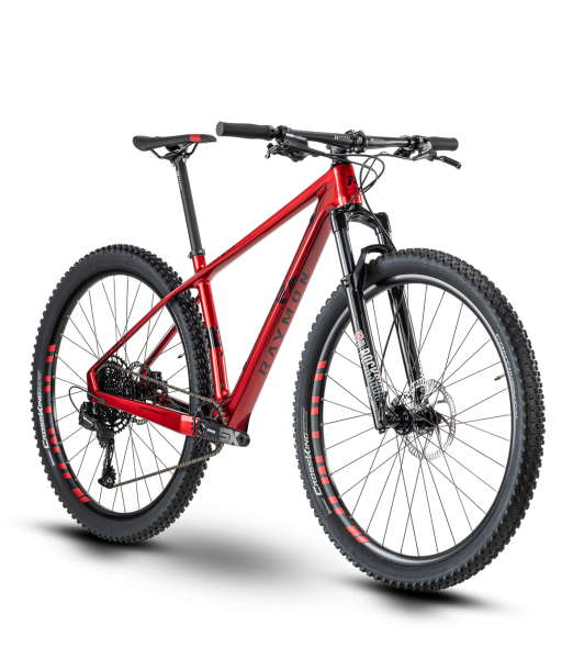 "R Raymon HardRay Nine 7.0 29"" Mountainbike Hardtail 2020"