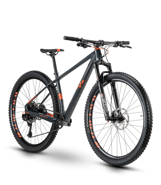 "R Raymon HardRay Nine 8.0 29"" Mountainbike Hardtail 2020"